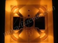 инкубатор Квочка с ламповым нагревом