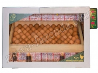 инкубатор на 80 яиц