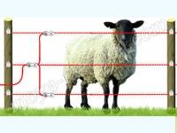 электрический пастух для овец
