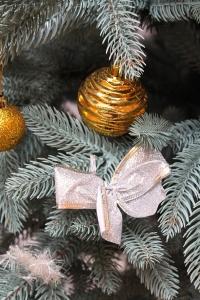 елка новогодняя голубая смерека