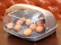 оборудование для домашнего птицеводства