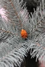литая елка с шышками