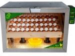 Инкубатор для яиц Фазенда 80 РВ автоматический переворот, контроль влажности и температуры