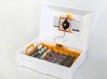 Автоматический инкубатор с резервным питанием 12 В Теплуша